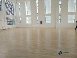室内运动馆木地板安装公司